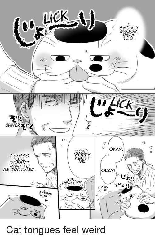 Weird, Guess, and Okay: LICK  SHOLULO  GROOM  TOO  SHIVER  OKAY,  DON'T  I GUESS  PAPA  DOESN'T  WANT TO  SE GROOMED  ABOU  ME.  OKAY!  じょリ  OH,  REALLYP  dk.oop  ROUGH...