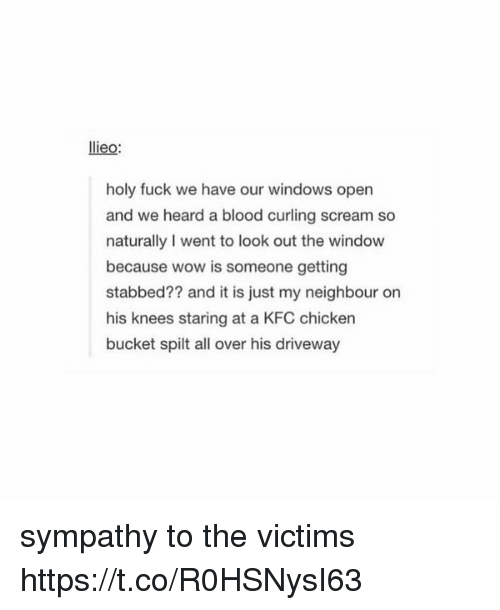 Looking Out The Window: lieo:  holy fuck we have our windows open  and we heard a blood curling scream so  naturally I went to look out the window  because wow is someone getting  stabbed?? and it is just my neighbour on  his knees staring at a KFC chicken  bucket spilt all over his driveway  bucket spit all over his driveway sympathy to the victims https://t.co/R0HSNysI63