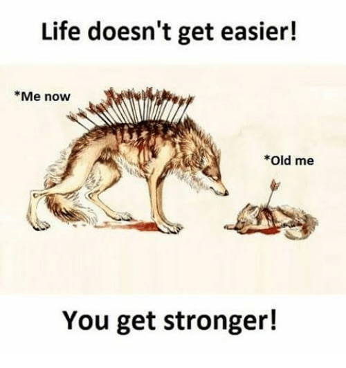 Memes, 🤖, and Me You: Life doesn't get easier!  Me now  Old me  You get stronger!