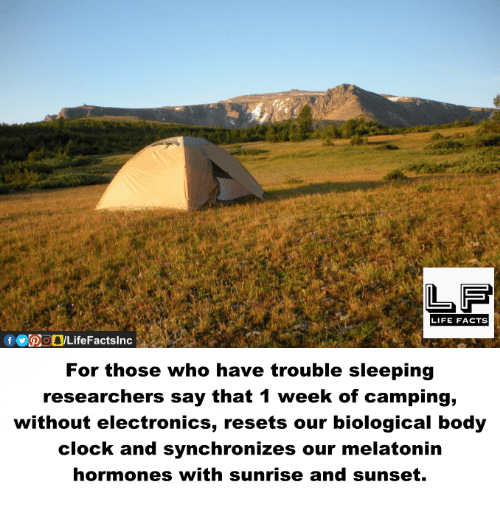 Clock, Facts, and Life: LIFE FACTS  For those who have trouble sleeping  researchers say that 1 week of camping,  without electronics, resets our biological body  clock and synchronizes our melatonin  hormones with sunrise and sunset.