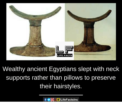 Facts, Life, and Memes: LIFE FACTS  Wealthy ancient Egyptians slept with neck  supports rather than pillows to preserve  their hairstyles.