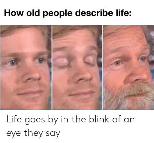 blink: Life goes by in the blink of an eye they say