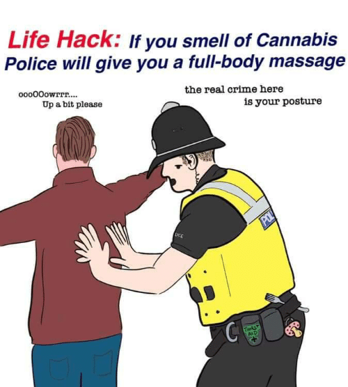 full body massage: Life Hack: If you smell of Cannabis  Police will give you a full-body massage  ooo00owrrr....  the real crime here  Up a bit please  is your posture  POL  LICE  THIRST  AID