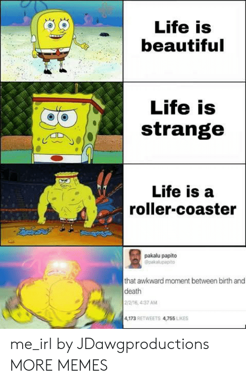 Pakalu Papito: Life is  beautiful  Life is  strange  Life is a  roller-coaster  pakalu papito  Opakalupapito  that awkward moment between birth and  death  2/2/16, 4:37 AM  4,173 RETWEETS 4,755 LIKES me_irl by JDawgproductions MORE MEMES
