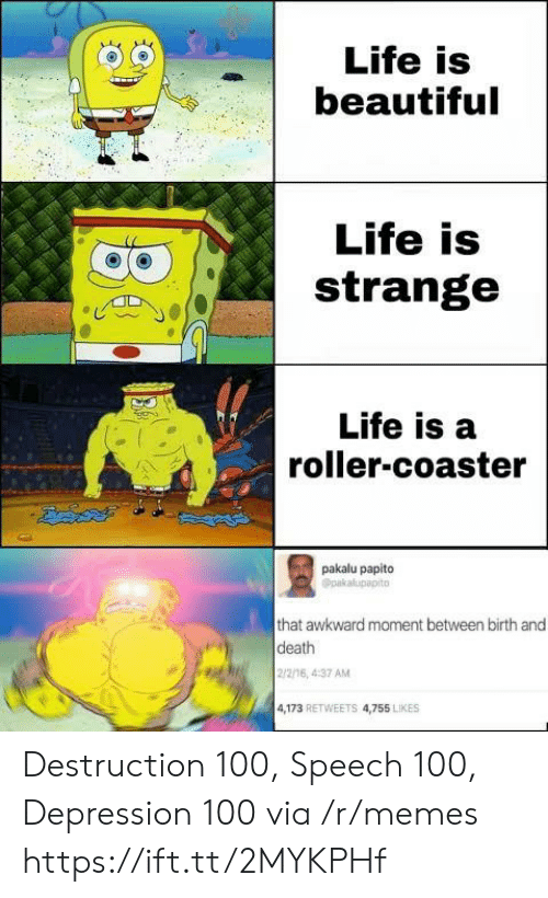destruction: Life is  beautiful  Life is  strange  Life is a  roller-coaster  pakalu papito  Opakalupapito  that awkward moment between birth and  death  2/2/16, 4:37 AM  4,173 RETWEETS 4,755 LIKES Destruction 100, Speech 100, Depression 100 via /r/memes https://ift.tt/2MYKPHf