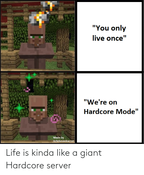 Kinda Like: Life is kinda like a giant Hardcore server