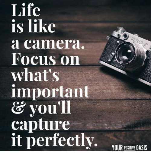 Life, Memes, and Oasis: Life  is like  a camera.  Focus on  what's  important  & you'll  capture  it perfectly  YOUR POSITIVE OASIS