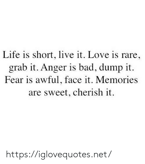 Awful: Life is short, live it. Love is rare,  grab it. Anger is bad, dump it.  Fear is awful, face it. Memories  are sweet, cherish it. https://iglovequotes.net/