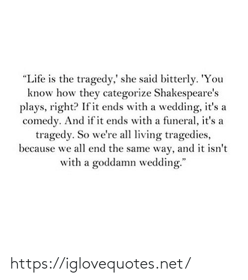 "she said: ""Life is the tragedy,' she said bitterly. 'You  know how they categorize Shakespeare's  plays, right? If it ends with a wedding, it's a  comedy. And if it ends with a funeral, it's a  tragedy. So we're all living tragedies,  because we all end the same way, and it isn't  with a goddamn wedding."" https://iglovequotes.net/"