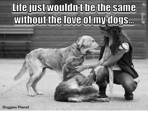 Life, Love, and Memes: Life just wouldnt be the same  Without the love of  my dogs  Doggies Planet