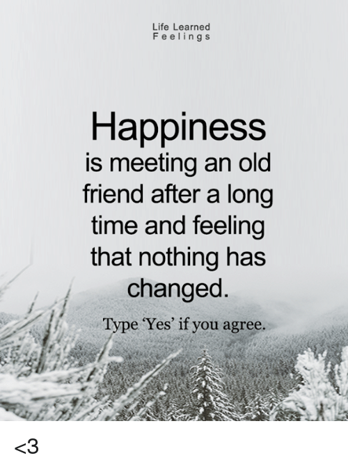 Quotes On Meeting Someone Special After A Long Time: Life Learned Feelings Happiness Is Meeting An Old Friend