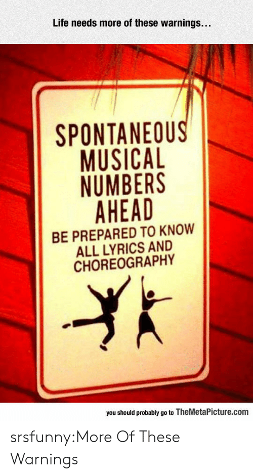 Choreography: Life needs more of these warnings...  SPONTANEOU  MUSICAL  NUMBERS  AHEAD  BE PREPARED TO KNOW  ALL LYRICS AND  CHOREOGRAPHY  you should probably go to TheMetaPicture.com srsfunny:More Of These Warnings