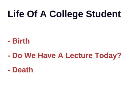 Life Of A: Life Of A College Student  Birth  Do We Have A Lecture Today?  Death