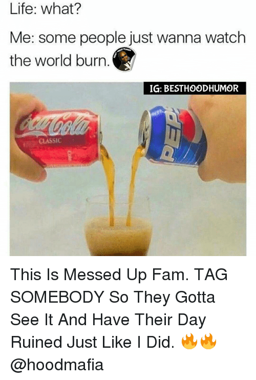 Fam, Memes, and Classical: Life: what?  Me: some people just wanna watch  the world burn  IG: BESTHOODHUMOR  CLASSIC This Is Messed Up Fam. TAG SOMEBODY So They Gotta See It And Have Their Day Ruined Just Like I Did. 🔥🔥 @hoodmafia