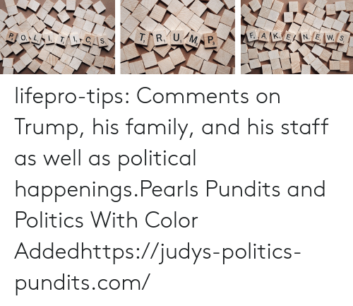 pundits: lifepro-tips:  Comments on Trump, his family, and his staff as well as political happenings.Pearls Pundits and Politics With Color Addedhttps://judys-politics-pundits.com/