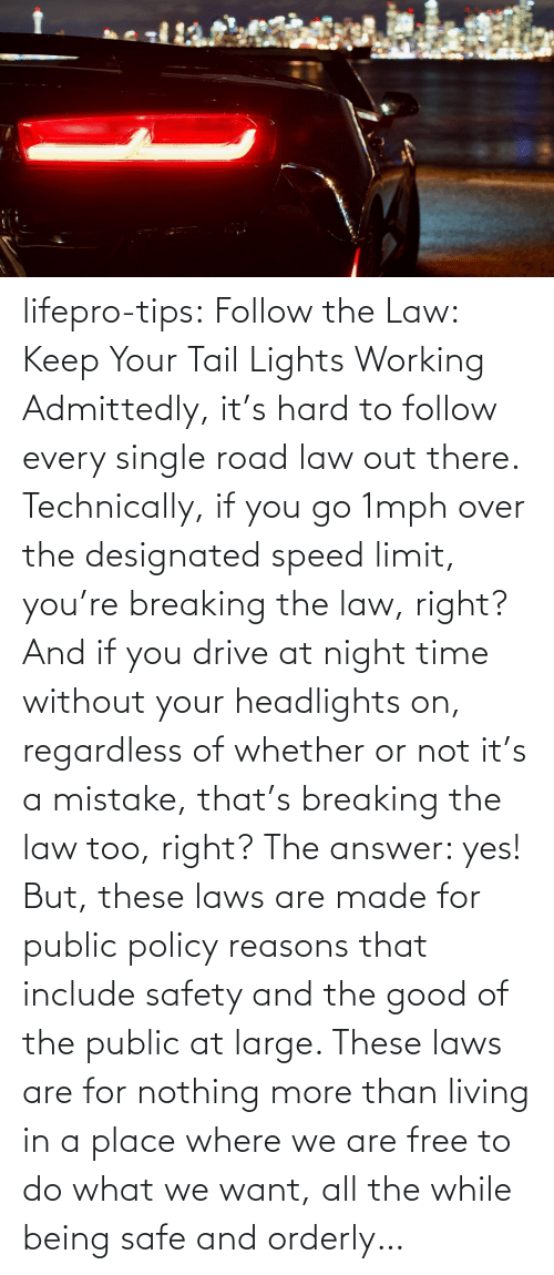 orderly: lifepro-tips: Follow the Law: Keep Your Tail Lights Working Admittedly, it's hard to follow every single road law out there. Technically, if you go 1mph over the designated speed limit, you're breaking the law, right? And if you drive at night time without your headlights on, regardless of whether or not it's a mistake, that's breaking the law too, right? The answer: yes! But, these laws are made for public policy reasons that include safety and the good of the public at large. These laws are for nothing more than living in a place where we are free to do what we want, all the while being safe and orderly…