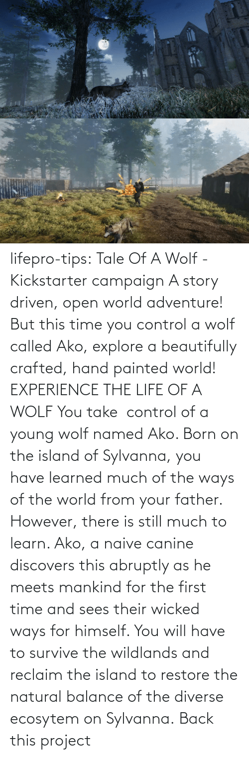 Young: lifepro-tips: Tale Of A Wolf - Kickstarter campaign  A story driven, open world adventure! But this time you control a wolf  called Ako, explore a beautifully crafted, hand painted world!  EXPERIENCE THE LIFE OF A WOLF You take  control of a young wolf named Ako. Born on the island  of Sylvanna, you have learned much of the ways of the world from your  father. However, there is still much to learn. Ako, a naive canine  discovers this abruptly as he meets mankind for the first time and sees  their wicked ways for himself. You will have to survive the wildlands  and reclaim the island to restore the natural balance of the diverse  ecosytem on Sylvanna.   Back this project