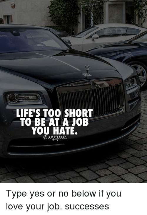 Love, Memes, and Too Short: LIFE'S TOO SHORT  TO BE AT A JOB  YOU HATE. Type yes or no below if you love your job. successes
