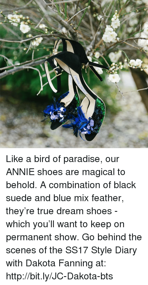 Memes, 🤖, and Dream: Like a bird of paradise, our ANNIE shoes are magical to behold. A combination of black suede and blue mix feather, they're true dream shoes - which you'll want to keep on permanent show. Go behind the scenes of the SS17 Style Diary with Dakota Fanning at: http://bit.ly/JC-Dakota-bts