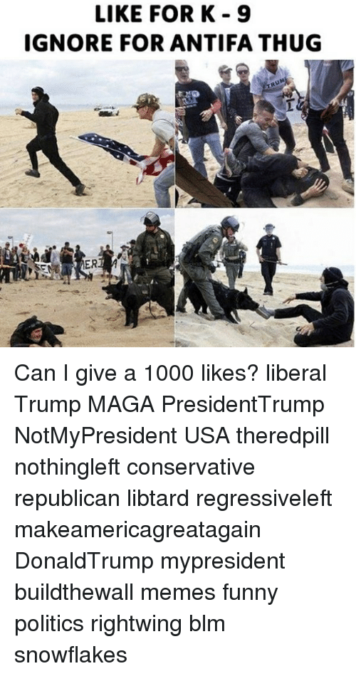 Funny, Memes, and Politics: LIKE FORK 9  IGNORE FOR ANTIFA THUG Can I give a 1000 likes? liberal Trump MAGA PresidentTrump NotMyPresident USA theredpill nothingleft conservative republican libtard regressiveleft makeamericagreatagain DonaldTrump mypresident buildthewall memes funny politics rightwing blm snowflakes