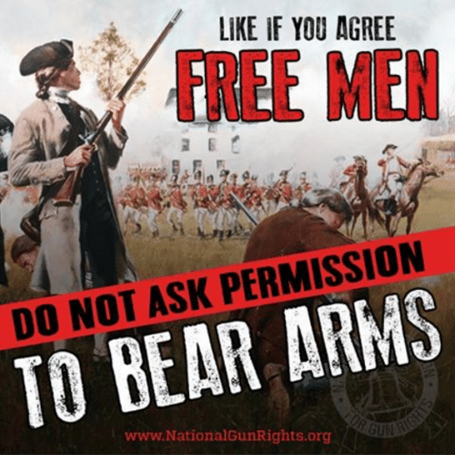 Memes, Bear, and Free: LIKE IF YOU AGREE  FREE MIEN  DO NOT ASK PERMISSION  TO BEAR ARMS  www.NationalGunRights.org