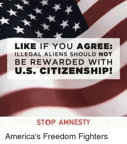 America Freedom: LIKE IF YOU AGREE:  ILLEGAL ALIENS SHOULD NOT  BE REWARDED WITH  U.S. CITIZENSHIP!  STOP AMNESTY America's Freedom Fighters