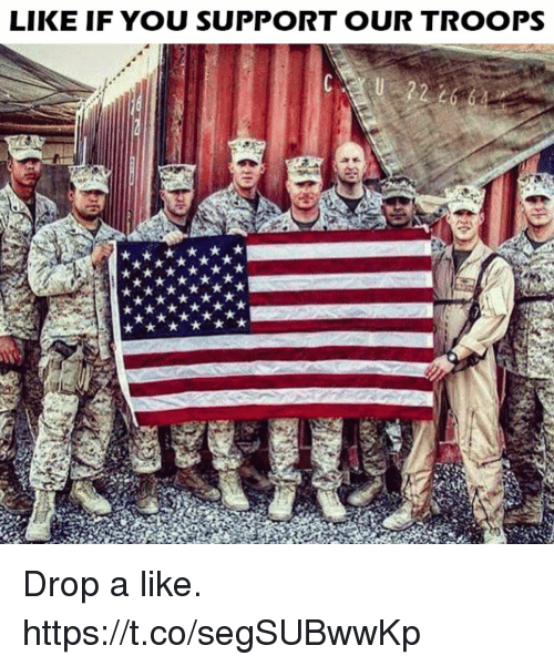 Memes, 🤖, and You: LIKE IF YOU SUPPORT OUR TROOPS Drop a like. https://t.co/segSUBwwKp