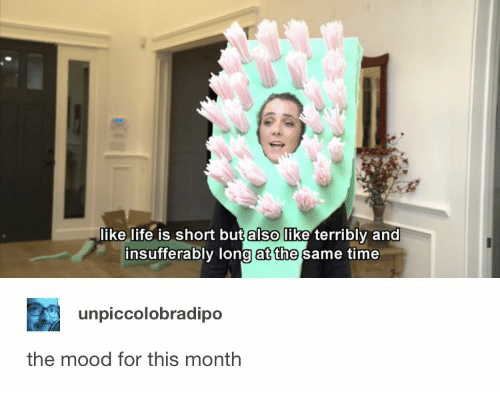 terribly: like life is short but also like terribly and  insufferably long at the same time  unpiccolobradipo  the mood for this month