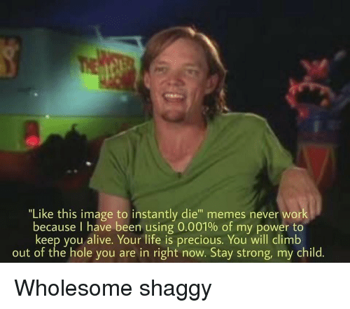 """the hole: """"Like this image to instantly die"""" memes never work  because I have been using 0.001% of my power to  keep you alive. Your life is precious. You will climb  out of the hole you are in right now. Stay strong, my child. Wholesome shaggy"""
