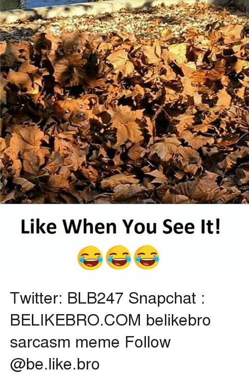 Be Like, Meme, and Memes: Like When You See It! Twitter: BLB247 Snapchat : BELIKEBRO.COM belikebro sarcasm meme Follow @be.like.bro