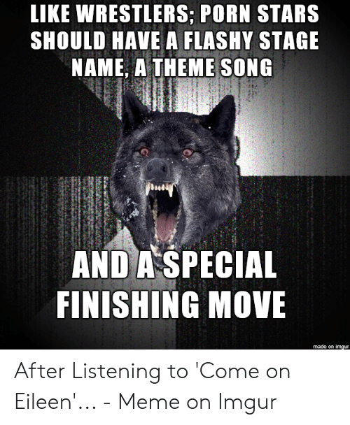 Eileen Meme: LIKE WRESTLERS; PORN STARS  SHOULD HAVE A FLASHY STAGE  NAME, A THEME SONG  AND A SPECIAL  FINISHING MOVE  made on imgur