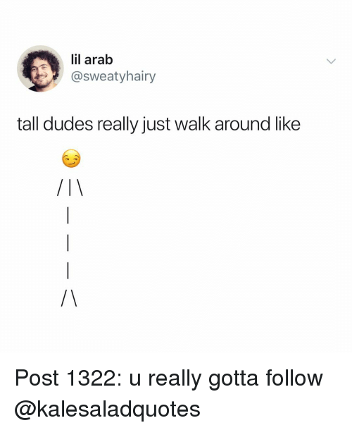 Memes, Arab, and 🤖: lil arab  @sweatyhairy  tall dudes really just walk around like Post 1322: u really gotta follow @kalesaladquotes