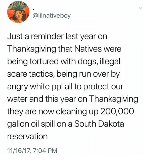 Bailey Jay, Dogs, and Memes: @lilnativeboy  Just a reminder last year on  Thanksgiving that Natives were  being tortured with dogs, illegal  scare tactics, being run over by  angry white ppl all to protect our  water and this year on Thanksgiving  they are now cleaning up 200,000  gallon oil spill on a South Dakota  reservation  11/16/17, 7:04 PM
