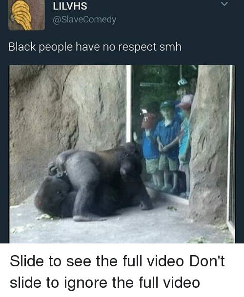Memes, Respect, and Smh: LILVHS  @SlaveComedy  Black people have no respect smh Slide to see the full video Don't slide to ignore the full video