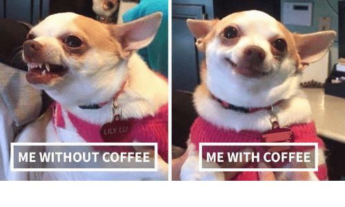 lily lu: LILY LU  ME WITHOUT COFFEE  ME WITH COFFEE