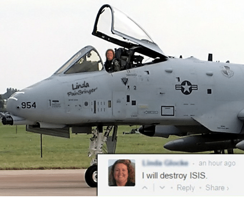 I Will Destroy Isis: Linda  R 2  er  954  , an hour ago  I will destroy ISIS  ^い. Reply . Sh  are 》