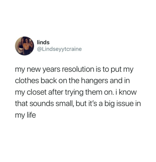 new year's resolution: linds  @Lindseyytcraine  my new years resolution is to put my  clothes back on the hangers and in  my closet after trying them on. i know  that sounds small, but it's a big issue in  my life