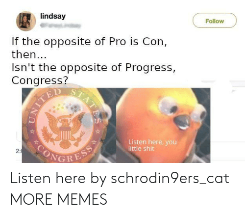 congress: lindsay  Follow  If the opposite of Pro is Con,  then...  Isn't the opposite of Progress,  Congress?  TED  Listen here, you  little shit  SONGRESS  2:  STATES Listen here by schrodin9ers_cat MORE MEMES