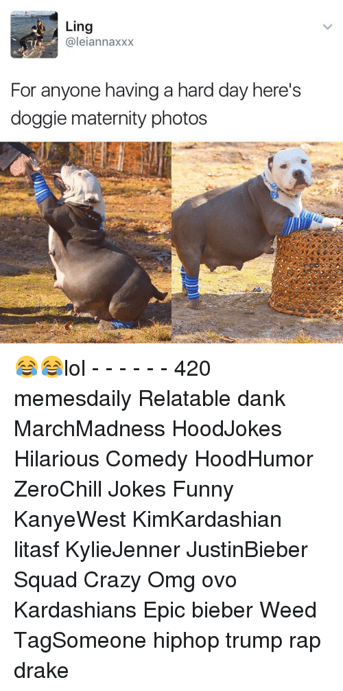 Memes, 🤖, and Weeds: Ling  (a leian naxXX  For anyone having a hard day here's  doggie maternity photos 😂😂lol - - - - - - 420 memesdaily Relatable dank MarchMadness HoodJokes Hilarious Comedy HoodHumor ZeroChill Jokes Funny KanyeWest KimKardashian litasf KylieJenner JustinBieber Squad Crazy Omg ovo Kardashians Epic bieber Weed TagSomeone hiphop trump rap drake