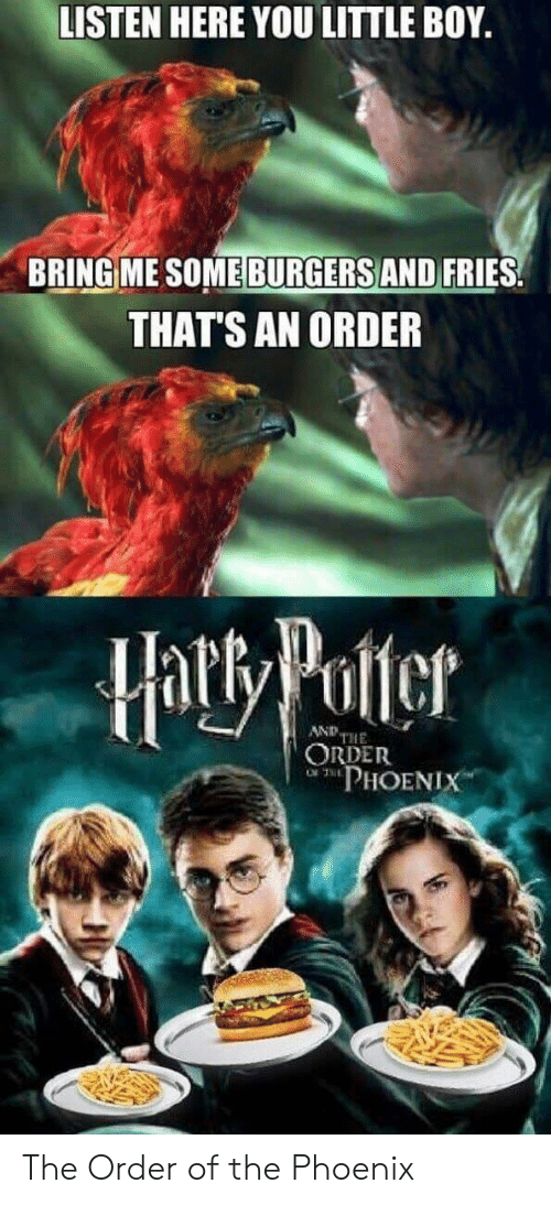 little-boy: LISTEN HERE YOU LITTLE BOY.  BRING ME SOME BURGERS AND FRIES  THAT'S AN ORDER  Hatty Potter  AND THE  ORDER  PHOENIX The Order of the Phoenix