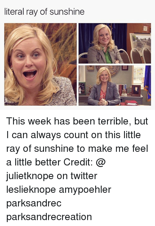 Memes, Twitter, and Been: literal ray of sunshine This week has been terrible, but I can always count on this little ray of sunshine to make me feel a little better Credit: @ julietknope on twitter leslieknope amypoehler parksandrec parksandrecreation