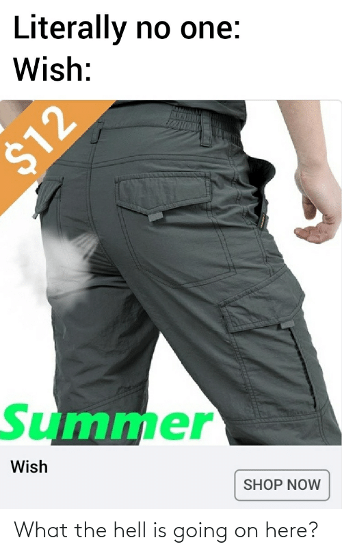 What The Hell Is Going On Here: Literally  no one:  Wish:  %$412  Summer  Wish  SHOP NOW What the hell is going on here?