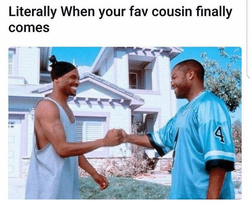 Memes, 🤖, and Cousins: Literally When your fav cousin finally  comes