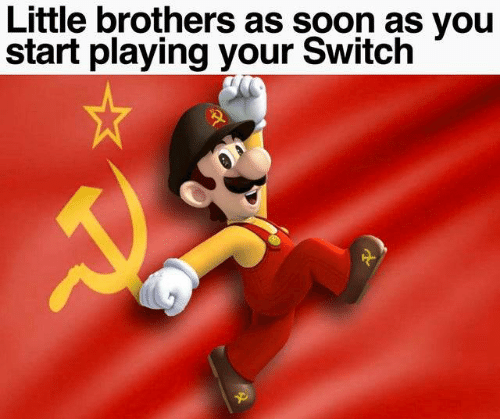 brothers: Little brothers as soon as you  start playing your Switch