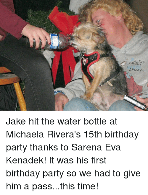 Memes, 🤖, and Eva: Little Do  Dream Jake hit the water bottle at Michaela Rivera's 15th birthday party thanks to Sarena Eva Kenadek! It was his first birthday party so we had to give him a pass...this time!