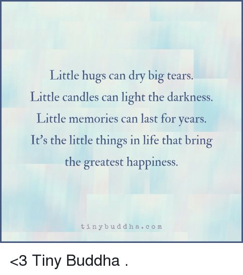 Life, Memes, and Buddha: Little hugs can dry big tears.  Little candles can light the darkness.  Little memories can last for years.  It's the little things in life that bring  the greatest happiness.  t in y b u d d h a c o m <3 Tiny Buddha  .