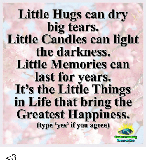 Compassion: Little Hugs can dry  big tears.  Little Candles can light  the darkness.  Little Memories can  last for years.  It's the Little Things  in Life that bring the  Greatest Happiness.  type eyes if you agree)  Compassion <3