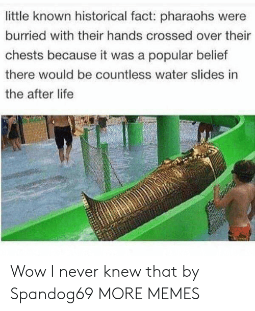 Slides In: little known historical fact: pharaohs were  burried with their hands crossed over their  chests because it was a popular belief  there would be countless water slides in  the after life Wow I never knew that by Spandog69 MORE MEMES