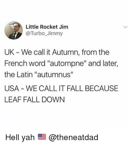 "Fall, Funny, and Yah: Little Rocket Jim  @Turbo_Jimmy  UK - We call it Autumn, from the  French word ""autompne"" and later,  the Latin ""autumnus""  USA - WE CALL IT FALL BECAUSE  LEAF FALL DOWN Hell yah 🇺🇸 @theneatdad"