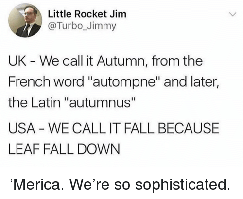 "Fall, Memes, and Word: Little Rocket Jinm  @Turbo_Jimmy  UK - We call it Autumn, from the  French word ""autompne"" and later,  the Latin ""autumnus""  USA WE CALL IT FALL BECAUSE  LEAF FALL DOWN 'Merica. We're so sophisticated."